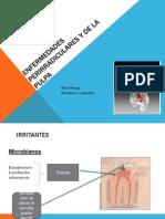 enfermedas perirradiculares y la pulpa (1).ppt
