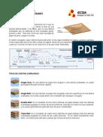 Principios Del Carton