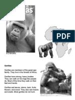 280180 Gorillas Texto Para Trabajar La Comprension Lectora en Ingles