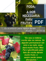 1º-2º SEGREDO DA VINHA - PODA, A DOR E DISCIPLINA
