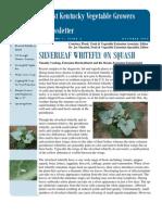 silverleaf whitefly on squash.pdf