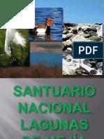 Santuaio Nacional Lagunas de Mejia