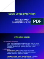 Slow Virus Dan Prion