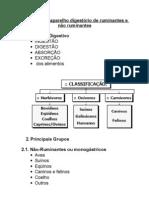 54821987-Anatomia-do-aparelho-digestorio-de-ruminantes-e-nao-ruminantes.pdf