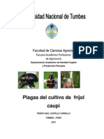 Manual de Plagas de Frijol CAUPI NEW 2013