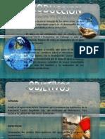 proyecto del agua.pptx