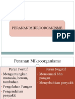 86873010-peranan-mikroorganisme