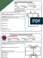 MICROCICLO 3.pptx