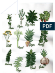 86873747 the PDR for Herbal Medicines