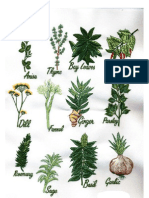 Herbal medicines for pdf pdr