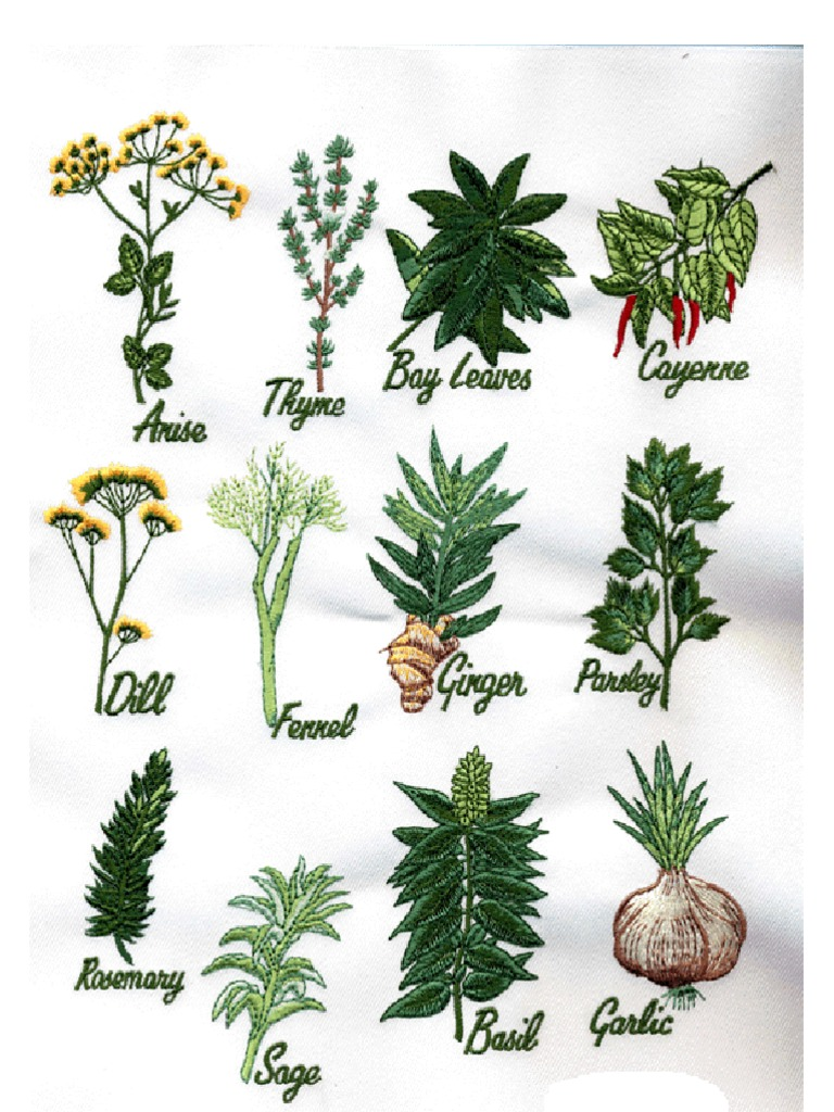 Buyers of herbal product - 86873747 The Pdr For Herbal Medicines