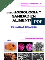 Microbiologia y Sanidad en Alimentos_xiiconia2012_unprg-Lambayeque