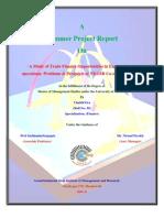 Chaitik- Final Summer Project