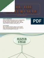 58710180 Sulfur Cycle