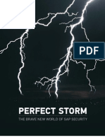 Perfect Storm the Brave New World of SAP Security v 1 2