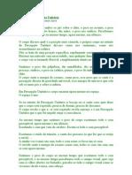 Intento_de_Percepção_Unitária_-_Alba_Lagranda_p
