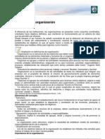Lectura 18 - La noción de organización