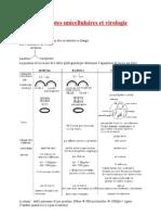 Eucaryotes Et Virologie (Version 2)