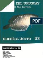 Peces en Uruguay (Www.periodicas.edu.Uy)