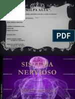 Final Nervios