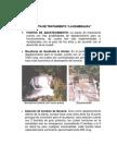 Descripcion Planta La Esmeralda