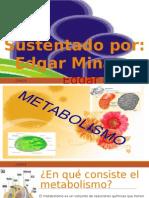 Presentacion Metabolismo Edgar
