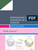 Biossintese e Oxidac3a7c3a3o de c3a1cidos Graxos