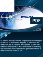 motilina (1)