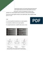 Electromagnetismo-1[1].docx