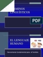 terminos linguisticos