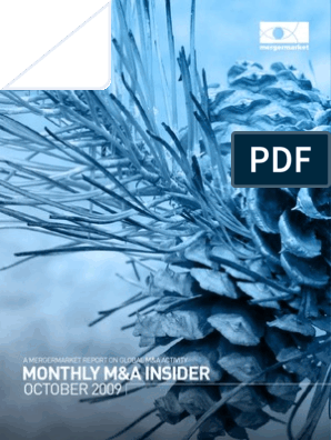 Monthly M&A Insider: October 2009