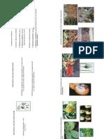 sintomas e sinais.pdf