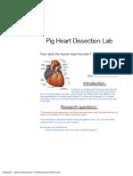 pig heart edit emily