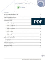 Excel Para Executivos de Vendas_EEV - APOSTILA