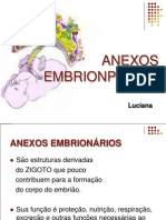 2ª AULA- ANEXOS EMBRIONPARIOS