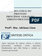 6 AULA PRINCÍPIOS GERAIS DO DIREITO PROCESSUAL
