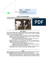 Dairy Cattle Management