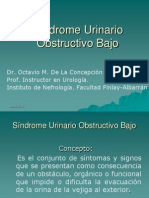 52644670-sindrome-urinario-obstructivo-bajo.ppt