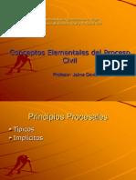 20071202-Conceptos Elementales Del Proceso Civil