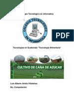 investigacion tecnologia alimentaria.pdf