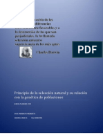 Principio de la selección natural y su relación con la genética de poblaciones