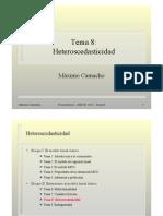 08-heteroscedasticidad
