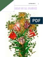 Las Horas de La Pasion (Luisa Piccarreta)