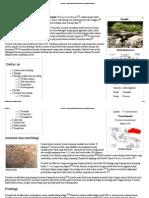 Komodo - Wikipedia Bahasa Indonesia, Ensiklopedia Bebas