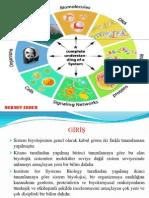 yeşil sistem biyolojisi