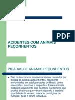 ACIDENTES COM ANIMAIS PE-¦ÇONHENTOS