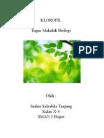 Klorofil.docx