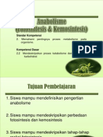 Anabolisme Fotositesis