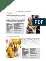 Programas Centros Educativos _web