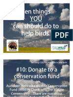 10 Things to Help Birds